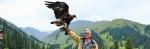 史维教授爱好拍摄雀鸟 - 香港科技大学
